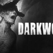 Darkwood – Review